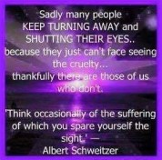 Animal abuse - Pics spare yourself Albert Schweitzer